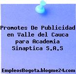 Promotes De Publicidad en Valle del Cauca para Academia Sinaptica S.A.S