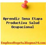 Aprendiz Sena Etapa Productiva Salud Ocupacional