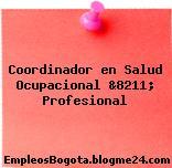 Coordinador en Salud Ocupacional &8211; Profesional