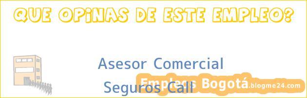 Asesor Comercial | Seguros Call