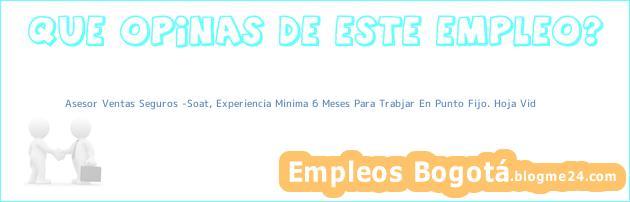 Asesor Ventas Seguros -Soat, Experiencia Minima 6 Meses Para Trabjar En Punto Fijo. Hoja Vid