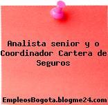 Analista senior y o Coordinador Cartera de Seguros