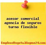 asesor comercial agencia de seguros turno flexible