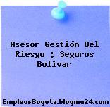 Asesor Gestión Del Riesgo – Seguros Bolívar