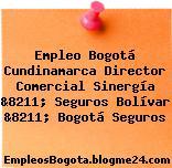 Empleo Bogotá Cundinamarca Director Comercial Sinergía &8211; Seguros Bolívar &8211; Bogotá Seguros