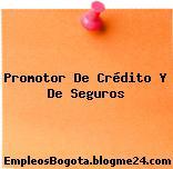 Promotor De Crédito Y De Seguros