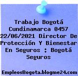 Trabajo Bogotá Cundinamarca 0457 22/06/2021 Director De Protección Y Bienestar En Seguros : Bogotá Seguros