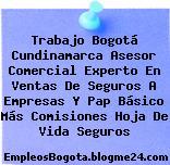 Trabajo Bogotá Cundinamarca Asesor Comercial Experto En Ventas De Seguros A Empresas Y Pap Básico Más Comisiones Hoja De Vida Seguros