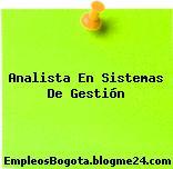 Analista En Sistemas De Gestión