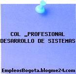 COL _PROFESIONAL DESARROLLO DE SISTEMAS