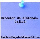 Director de sistemas, Cajicá
