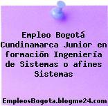 Empleo Bogotá Cundinamarca Junior en formación Ingeniería de Sistemas o afines Sistemas