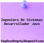Ingeniero De Sistemas Desarrollador Java