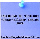 INGENIERO DE SISTEMAS -Desarrollador SENIOR JAVA