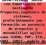 Ingeniero Desarrollador Senior con Experiencia en Gestion de Proyectos.ingeniero de sistemas, preferiblemente con formación en gerencia de proyectos y metodolifias agiles como SCRUM, PMP, ITIL, CMMI, COBIT, modelo de servicios. Microservicios. Conocimien