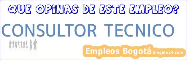 CONSULTOR TECNICO