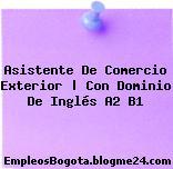 Asistente De Comercio Exterior | Con Dominio De Inglés A2 B1