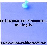 Asistente De Proyectos Bilingüe