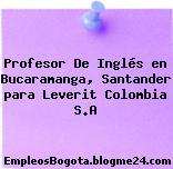 Profesor De Inglés en Bucaramanga, Santander para Leverit Colombia S.A