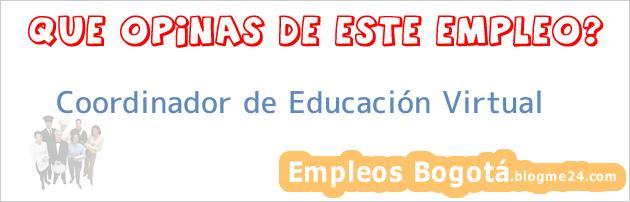 Coordinador De Educación Virtual