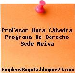 Profesor Hora Cátedra Programa De Derecho Sede Neiva