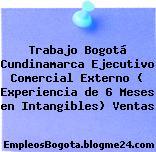 Trabajo Bogotá Cundinamarca Ejecutivo Comercial Externo ( Experiencia de 6 Meses en Intangibles) Ventas