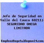 Jefe de Seguridad en Valle del Cauca &8211; SEGURIDAD OMEGA LIMITADA
