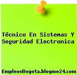 Técnico En Sistemas Y Seguridad Electronica